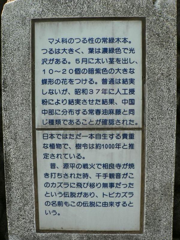 P1290878