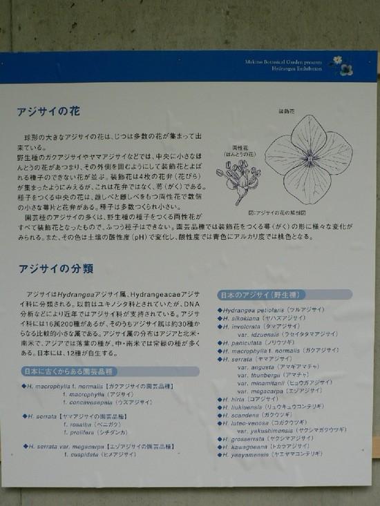 P1110423