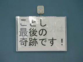 P1140690_1